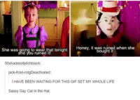 Cats, Funny, and Gif: Honey, it was when she  ght  She was going to wear that tonight  jack-frost-r  IHAVE BEEN WAITING FOR THIS GIF SET MY WHOLE LIFE  Sassy Gay Cat in the Hat.