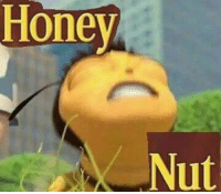 honey: Honey  Nut