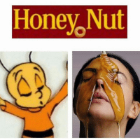 O M F G lol: Honey Nut O M F G lol