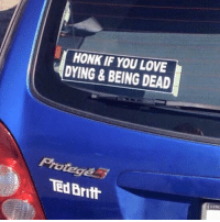 lino: HONK IF YOU LOVE  DYING BEING DEAD  Proteges  TEd Britt  LINO