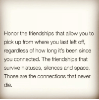 Funny, Connected, and Space: Honor the friendships that allow you to  pick up from where you last left off  regardless of how long it's been since  you connected. The friendships that  survive hiatuses, silences and space.  Those are the connections that never  die. Goodnight💋