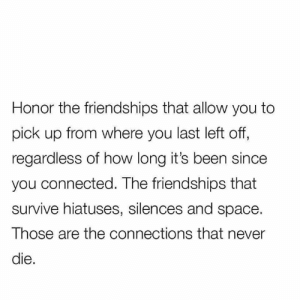 Relationships, Connected, and Space: Honor the friendships that allow you to  pick up from where you last left off,  regardless of how long it's been since  you connected. The friendships that  survive hiatuses, silences and space.  Those are the connections that never  die.