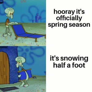 Ass, Reddit, and Spring: hooray it's  officially  spring season  it's snowing  half a foot Springing my ass back into some pajamas