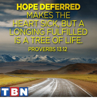Memes, Tree, and Sick: HOPE DEFERRED  MAKES THE  HEART SICK BUT A  LONGING FULFILLED  IS A TREE OF LIEE  PROVERBS 13:12  TBN Never loose sight of your HOPE.