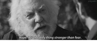 The Hunger Games: Hope. It is the only thing stronger than fear. The Hunger Games