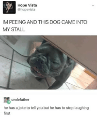 Just like sliding into DMs: Hope Vista  @hopevista  IM PEEING AND THIS DOG CAME INTO  MY STALL  unclefather  he has a joke to tell you but he has to stop laughing  first Just like sliding into DMs