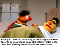 Hoping to cheer up his buddy, Ernie brought out Bert's  favorite book. A bound copy of the Harry Potter fanfic,  'How Ron Weasley Died From Ghost Molestation' Another Harry Potter joke in Bertstrips