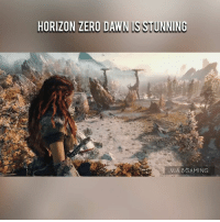 Dank, 🤖, and Via: HORIZON ZERO DAWN IS STUNNING  VIA 8 GAMING :O via 8Gaming
