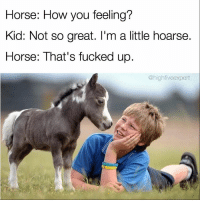 Memes, 🤖, and Scrolls: Horse: How you feeling?  Kid: Not so great. I'm a little hoarse.  Horse: That's tucked up  highfiveexpert @1foxybitch speaks the truth, especially if it's savage. Check out @1foxybitch and scroll your heart out! 🙌🏼