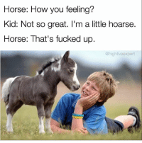 Memes, Horse, and 🤖: Horse: How you feeling?  Kid: Not so great. I'm a little hoarse.  Horse: That's fucked up  @highfive expert @highfiveexpert supplies some chronic memes. (SWIPE 👉🏽)
