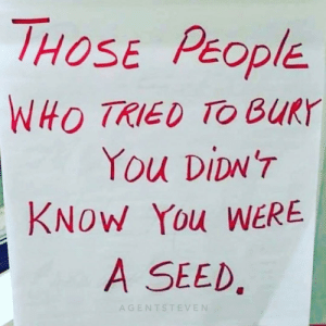 Memes, Time, and Doubt: HOSE PEOPIE  WHO TRIED TO BURY  You DiDNT  KNOW You WERE  A SEED,  AGENTSTEVEN They can doubt you and underestimate you, but you will prove them wrong every single time. 👊🏻