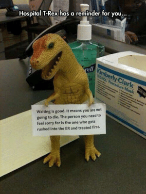"bisexual-nightwing:  ionlylooklikeahipster:  king-in-yellow:  official-liberty-prime:  srsfunny: Hospital T-Rex  Imagine being rushed into the ER and reading this as they push you through though  Lol when my appendix burst, I had initially refused to go to the ER because it was a Saturday night (which are always busy helltimes for ERs of course) - and when I arrived I was told there were eight people ahead of me. I agreed and just asked for something to drink and something for the nausea. They took my vital signs, looked at each other, and then whisked me back immediately to a room and within five minutes the ER attending physician came in (as opposed to a resident physician). ""Hahaha, holy shit, am I dying?"" I asked him - because HOSPITAL T-REX IS CORRECT  Okay but the T-Rex has abs drawn onto it in pen.   P90 Rex : Hospital T-Rex has a reminder for you.  ty.Cİ  lark  Waiting is good. It means you are not  going to die. The person you need to  feel sorry for is the one who gets  rushed into the ER and treated first. bisexual-nightwing:  ionlylooklikeahipster:  king-in-yellow:  official-liberty-prime:  srsfunny: Hospital T-Rex  Imagine being rushed into the ER and reading this as they push you through though  Lol when my appendix burst, I had initially refused to go to the ER because it was a Saturday night (which are always busy helltimes for ERs of course) - and when I arrived I was told there were eight people ahead of me. I agreed and just asked for something to drink and something for the nausea. They took my vital signs, looked at each other, and then whisked me back immediately to a room and within five minutes the ER attending physician came in (as opposed to a resident physician). ""Hahaha, holy shit, am I dying?"" I asked him - because HOSPITAL T-REX IS CORRECT  Okay but the T-Rex has abs drawn onto it in pen.   P90 Rex"