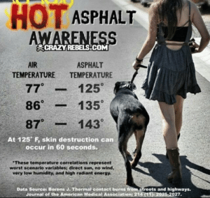 pendejaesthetic:  too-bassoon:  albertothechihuahua:  Signal boost!  If its too hot for you to walk on barefoot its too hot for your dog    reblogging again bc while it's important to know about, it's even more important to know about prevention.  4 ways to protect your dog's paws from hot concrete  tips to protect your pet's paws in the dog days of summer [..] treating summer burns  and just some other tips and reminders to help keep your dog safe in the heat.: HOT ASPHALT  AWARENESS  CRAZY REBELS.COM  AIR  ASPHALT  TEMPERATURE  TEMPERATURE  77°  125°  135  86°  143°  87°  At 125 F, skin destruction can  occur in 60 seconds.  These temperature correlations represent  worst scenario variables; direct sun, no wind,  very low humidity, and high radiant energy.  Data Source: Borens J. Thermal contact burns from streets and highways.  Journal of the American Medical Association; 214 (11): 2025-2027. pendejaesthetic:  too-bassoon:  albertothechihuahua:  Signal boost!  If its too hot for you to walk on barefoot its too hot for your dog    reblogging again bc while it's important to know about, it's even more important to know about prevention.  4 ways to protect your dog's paws from hot concrete  tips to protect your pet's paws in the dog days of summer [..] treating summer burns  and just some other tips and reminders to help keep your dog safe in the heat.
