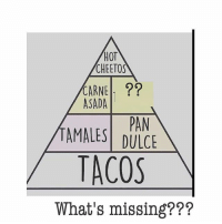 Cheetos, Memes, and Hot Cheetos: HOT  CHEETOS  CARNE  ASADA  PAN  TAMALES DULCE  TACOS  What's missing??? What's missing? FOLLOW US➡️ @so.mexican