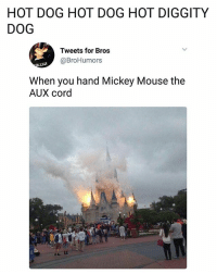 Lit, Memes, and Mickey Mouse: HOT DOG HOT DOG HOT DIGGITY  DOG  Tweets for Bros  @BroHumors  When you hand Mickey Mouse the  AUX cord It's literally lit.   Follow @aranjevi for more!