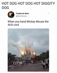 Memes, Mickey Mouse, and Mouse: HOT DOG HOT DOG HOT DIGGITY  DOG  Tweets for Bros  @BroHumors  When you hand Mickey Mouse the  AUX cord  AII 😮   follow @fuckersbelike for more