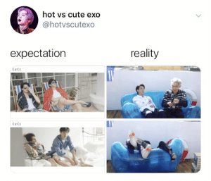 Cute, Memes, and Reality: hot vs cute exo  @hotvscutexo  reality  expectation  Ceci  Ceci EXO memes