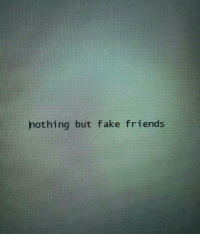 Fake, Friends, and Fake Friends: hothing but fake friends
