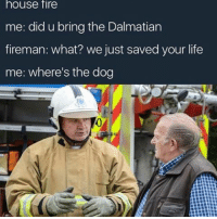 Me: house fire  me: did u bring the Dalmatian  fireman: what? we just saved your life  me: where's the dog Me