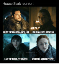 Hbo, Life, and Memes: House Stark reunion:  I DIED THEN CAME BACK TO LIFE  IAMA FACELESS ASSASSIN  ThronésMemes  IAM THE THREE-EYED RAVEN WHAT THE ACTUAL F KP!?! The reunion we are all waiting for 😂 . . . . . . . . . . thronesmemes gameofthrones asoiaf got hbo gameofthronesfamily gameofthronesfan gameofthronesmemes gotmemes gots7 winterishere gameofthronesseason7 gotseason7 jonsnow kitharington sansastark sansa sophieturner aryastark maisiewilliams branstark isaachempsteadwright