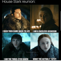Life, Memes, and House: House Stark reunion:  I DIED THEN CAME BACK TO LIFE  IAMA FACELESS ASSASSIN  ThronesMemes  IAM THE THREE-EYED RAVENWHAT THE ACTUALFRKP?! House stark! 🐺 . jonsnow jontargaryen aryastark branstark sansastark kitharington maisiewilliams isaachempsteadwright sophieturner gotmemes gameofthronesmemes gameofthronesfamily gameofthroneshbo got gameofthrones