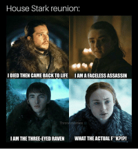 Hbo, Life, and Memes: House Stark reunion:  IDIED THEN CAME BACK TO LIFE IAMA FACELESS ASSASSIIN  ThronesMémes  IAM THE THREE-EYED RAVEN WHAT THE ACTUAL FK?!?! It's complicated ... GameofThrones HBO