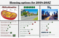 great movie: Housing options for 2018-2037  Mitoclondria  SUBURBS  Gitu  Matrix CristaeInner  Outer  membrane membrane  Outer membrane: Proper protective walls,  Great transportation options  Jobs on every tree V  Traffic jams  High crime rate  Prices: Long  Homeostasis: Home maybe. Ostasis no.  only let's useful stuffF in  Close to the cty centre Negative  Inner membrane: Another layer of Protection,  contains proteins V  Space: everywhere  Matrix: Great movie  v  Cristae: It does.  Homeostasis  Powerhouse of the cell.  Oh boy yes indeed.  Home is where the heart is  Air: yes  Pets : Tons of them. Keep at it.  Quiet: ETERNAL OO  Price: Everything has a  GOSHOPOLITAN  Great if you have or want children. Otherwise I'd chooseFatti for young adults and anybody  Fantastic for young adults and anybod  who likes to be busy  Is it in the heart? I believe so.  something else