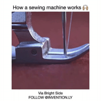 Food, Memes, and 🤖: How a sewing machine works  Via Bright Side  FOLLOW @INVENTION LY Follow for more 😀 ➡️ @invention.ly Video by BrightSide (Facebook) love instagood me smile follow cute photooftheday tbt followme girl beautiful happy picoftheday instadaily food swag