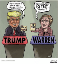 "Pocahontas, Genius, and Test: How about a  DNA TEST,  Pocahontas""?  How about an  IQ TEST,  ""Genius""?  ka  NA TEST  TRUMP  WARREN  van  WRITER&ARTIST IVAN EHLERS"