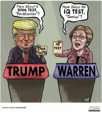 "Memes, Pocahontas, and Genius: How abouta  DNA TEST,  ""Pocahontas""?  How about an  IQ TEST,  ""Genius""?  (r  IQ  I TEST  DNA  TRUMPWARREN  Van!  WRITER& ARTIST IVAN EHLERS  COM"