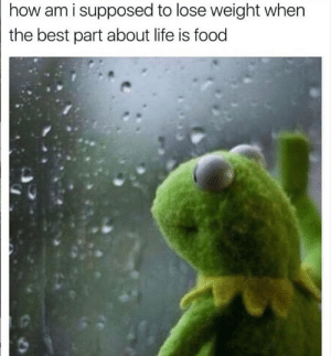 Dank, Food, and Life: how am i supposed to lose weight when  the best part about life is food 😔