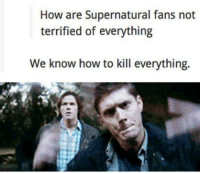 Supernatural: How are Supernatural fans not  terrified of everything  We know how to kill everything.