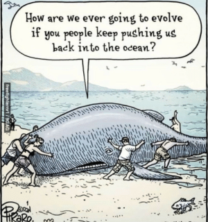Evolve, Ocean, and Back: How are we ever going to evolve  if you people keep pushing us  back into the ocean?  1  2  ·シ