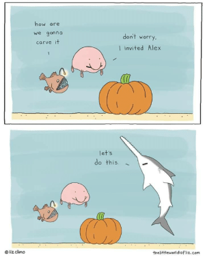 awesomacious:  Wholesome underwater Holloween: how are  we gonna  don't worry.  carve it  I invited Alex  let's  do this  liz climo  thelittleworldofliz.com awesomacious:  Wholesome underwater Holloween