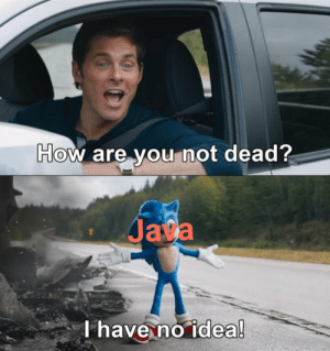 but seriously, how?: How are you not dead?  Java  T have no idea! but seriously, how?