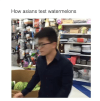 Asian, Memes, and Asians: How asians test watermelons Tag your egg rolls eating friends 👇🏽