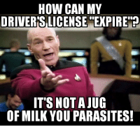 Memes, 🤖, and How: HOW CAN MY  DRIVER'S LICENSE EXPIRE ?  IT'S NOTAJUG  OF MILK YOU PARASITES! (CS)
