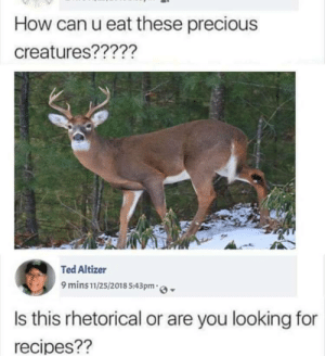 Precious, Ted, and Recipes: How can u eat these precious  creatures?????  Ted Altizer  9 mins11/25/2018 543pm o  Is this rhetorical or are you looking for  recipes?? How can u eat these precious creatures ???