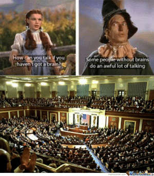 Wizard Of Oz by mrsanko87 - Meme Center: How can you talk if you  haven't got a brain?  Some people without brains  do an awful lot of talking  MemeCentere  memecenter.com Wizard Of Oz by mrsanko87 - Meme Center
