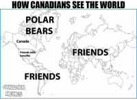 HOW CANADIANS SEE THE WORLD  POLAR  BEARS  Canada  FRIENDS  Friends with  benefits  FRIENDS  CANADIAN  MEMES -Looney Polar Bear