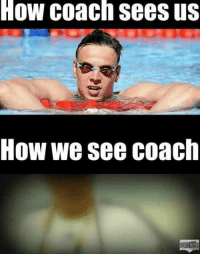 How, Coach, and Will: How coach sees us  How we see coach 6 Truths About Goggles Only Swimmers Will Understand