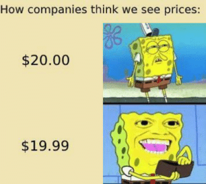 How companies think we see prices: How companies think we see prices