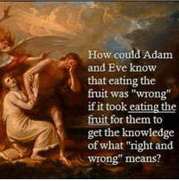 """Adam and Eve, Memes, and 🤖: How could Adam  and Eve know  that eating the  fruit was """"wrong""""  if it took eating the  fruit for them to  get the knowledge  of what """"right and  wrong"""" means? CW Brown"""