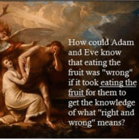 """Adam and Eve, Memes, and Knowledge: How could Adam  and Eve know  that eating the  fruit was """"wrong""""  if it took eating the  fruit for them to  get the knowledge  of what """"right and  wrong"""" means? Check out our secular apparel shop! http://wflatheism.spreadshirt.com/"""
