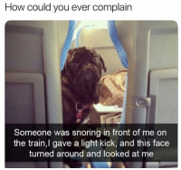 Dank, Train, and 🤖: How could you ever complain  Someone was snoring in front of me on  the train,l gave a light kick, and this face  turned around and looked at me