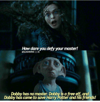 Dobbyyyy ❤️❤️  ~ Falconeye: How dare you defy your master!  @SLUGHORNS  IIG  Dobby has nomaster. Dobby is a free elf and  Dobby has come to save Harry Potter and his friends! Dobbyyyy ❤️❤️  ~ Falconeye