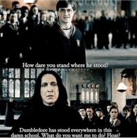 Dumbledore, Funny, and School: How dare you stand where he stood?  Dumbledore has stood everywhere in this  damn school. What do you want me to do? Float? Yes.