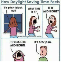 Daylight Savings: How Daylight Saving Time Feels  It's pitch black  What TIME  IS IT  out!  is it?  MIDNIGHT?  www.hedgerhumor, com  IT FEELS LIKE  It's 5:27 p.m.  MIDNIGHT!