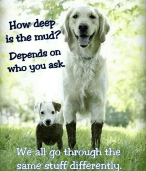 Facebook, Teacher, and Tumblr: How deep  is the mud?  Depends on  who you ask.  We all go through the  same stuff differentlu. avoidantknife: I feel like a mom on facebook reblogging this but I genuinely like it. I want to make this into a full size poster and put it in my 3rd grade classroom but I'm 20 yrs old and not a teacher