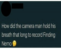 Finding Nemo, Memes, and Camera: How did the camera man hold his  breath that long to record Finding  Nemo Asking the real questions 🤔😨🏄